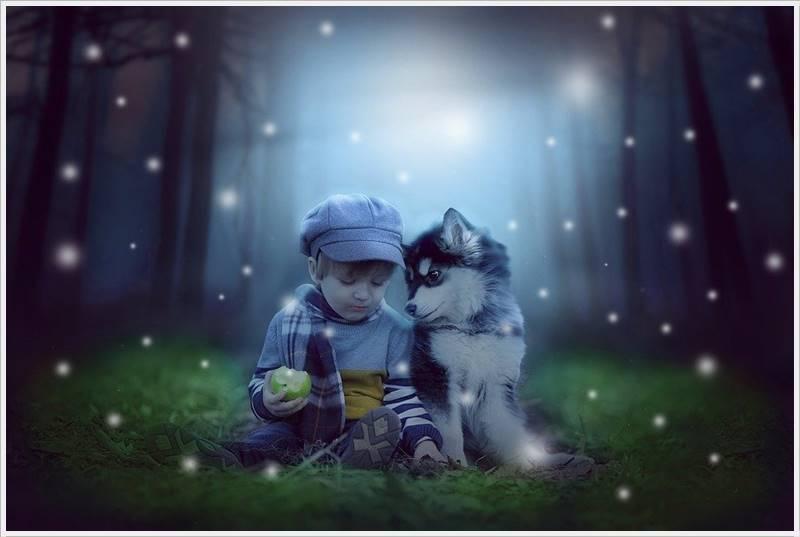 Cute Baby Boy Pics Wallpaper Image Photo Free Hd